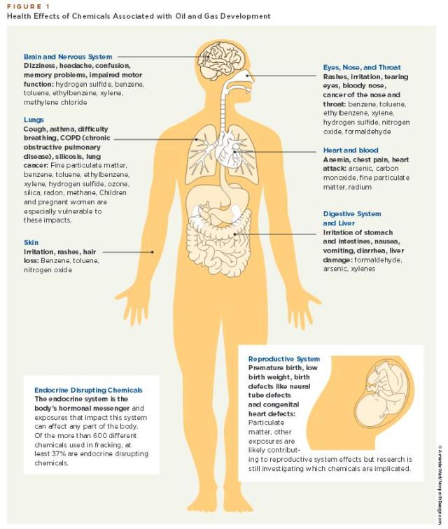 This image indicates the common symptoms and health impacts known to be linked to chemicals associated with unconventional oil and gas development, including some of the chemicals captured in air samples as part of this project. Click to enlarge.