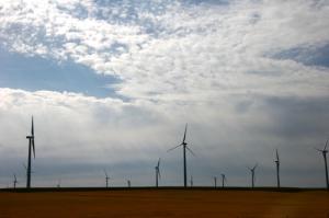 Wheatland County wind farm. Photo: Johanna Abzug